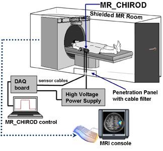 Функциональная магнитно-резонансная томографиия